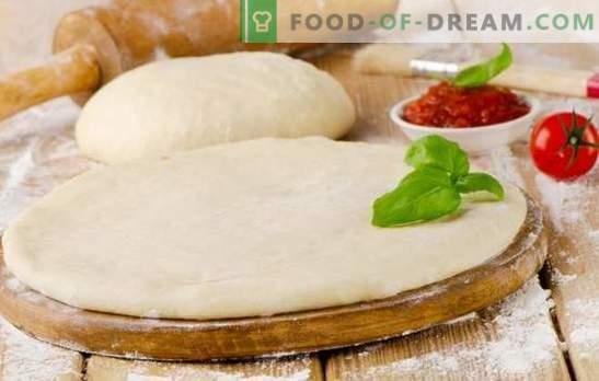 Massa de pizza com leite é uma base saborosa para um prato saboroso. Cozinhando uma variedade de massa de pizza com leite: exuberante, macio, crocante