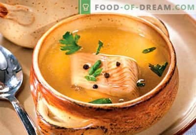 Caldo de peixe - as melhores receitas. Como corretamente e saboroso caldo de peixe cozinhar.