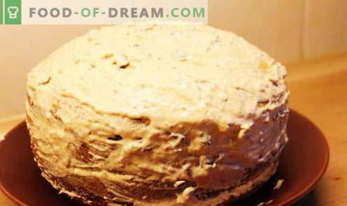 Bolo de mel - as melhores receitas. Como cozinhar corretamente e deliciosamente um bolo de mel.