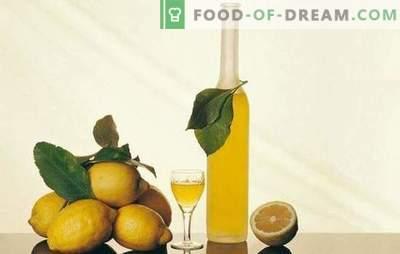 Tintura de limón y secretos de su elaboración. Recetas de tintura de limón para un bar casero con un aroma refrescante de cítricos