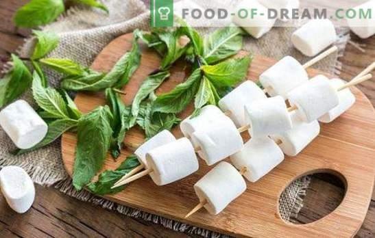 Pastilha de maçãs - mais fresca que qualquer doce! Como cozinhar doces de fruta de maçã em casa e pratos com