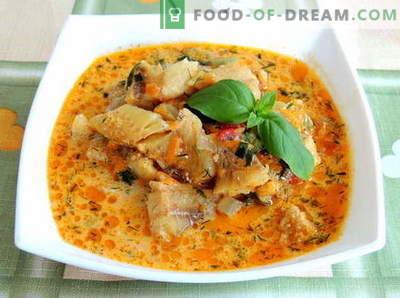Stufato di sgombro - le migliori ricette. Come cucinare in modo corretto e gustoso lo sgombro allo sgombro.