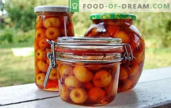 Maçãs em seu próprio suco para o inverno: frutas que são preservadas por si mesmas. Variantes de preparações interessantes - maçãs em suco próprio
