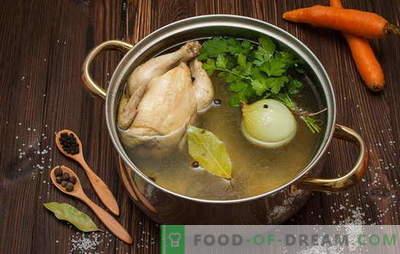 Como ferver caldo para sopa, sopa, molhos e outros pratos. Receitas: como cozinhar caldo de galinha, carne, peixe, carne de porco, osso