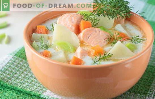 Sopa de peixe vermelho - como adultos e crianças. Receitas passo-a-passo para deliciosas sopas de peixe vermelho: salmão, salmão, salmão rosa