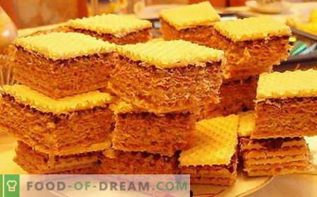 Bolo de waffle - as melhores receitas. Como corretamente e saboroso cozinhar bolo de waffle.