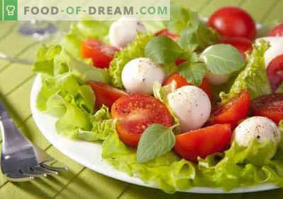 Salada com tomate e queijo - receitas culinárias comprovadas. Como preparar uma salada com tomate e queijo.