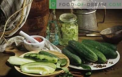 Pepinos com mostarda para o inverno: economize mais, são comidos - instantaneamente! Receitas comprovadas para pepinos com mostarda de inverno
