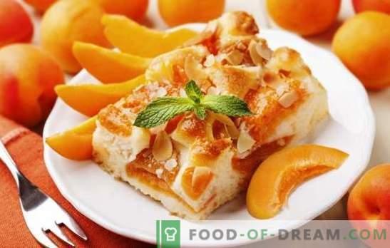 Torta com damasco de Julia Vysotskaya é uma obra-prima! Receitas famosa torta de damasco de Vysotsky e suas modificações