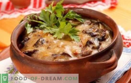Batatas com cogumelos em uma panela - para a vida cotidiana e feriados! Receitas diferentes para batatas com cogumelos em vasos