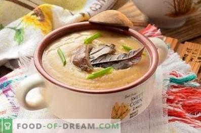 Sopa de cogumelos ostra
